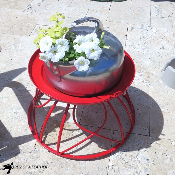 Give your yard or home a colourful makeover with these creative outside of the box planter ideas - all upcycled from unexpected items! Birdz of a Feather | Planter Ideas | Planters | Container Garden | Planters DIY | Container Garden Ideas | Container Gardening | Blue Jean Planter | Fire Pit Planter #birdzofafeather.ca #planters #gardendesignideas #upcycledplanters #indoorplanter #outdoorplanter