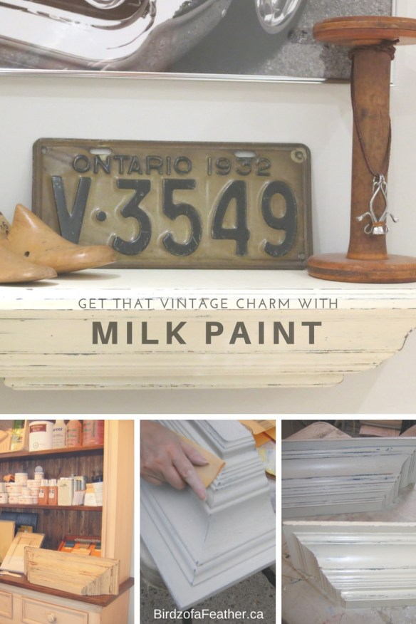 Milk Paint a Shelf! | How to milk paint a shelf | DIY milk painted shelf | Step by step milk paint tutorial on how to paint a shelf #MilkPaint #Craft #DIY #Paint #FurnitureMakeover | BirdzofaFeather.ca