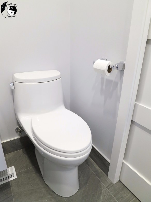 Install a one-piece toilet with tips from a plumber to get it level. Birdz of a Feather | One piece toilet | install a toilet | toilet installation | toto toilet | toto toilet one piece #birdzofafeather.ca #toiletinstallation #tototoilet