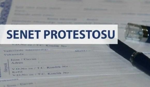 senet protesto günleri