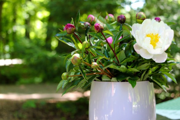 bouquet-4252450_1920