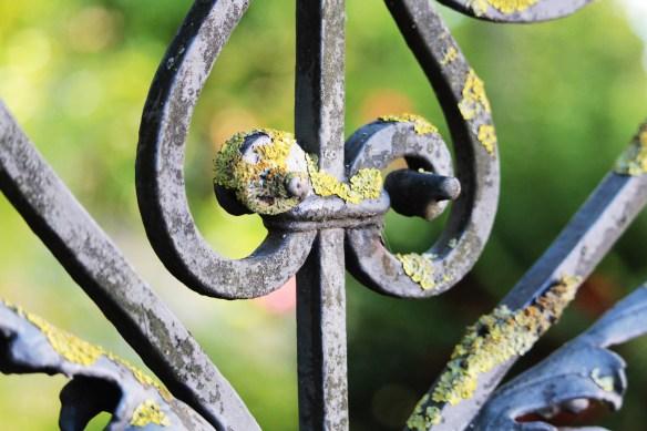 garden-fence-4473094_1920