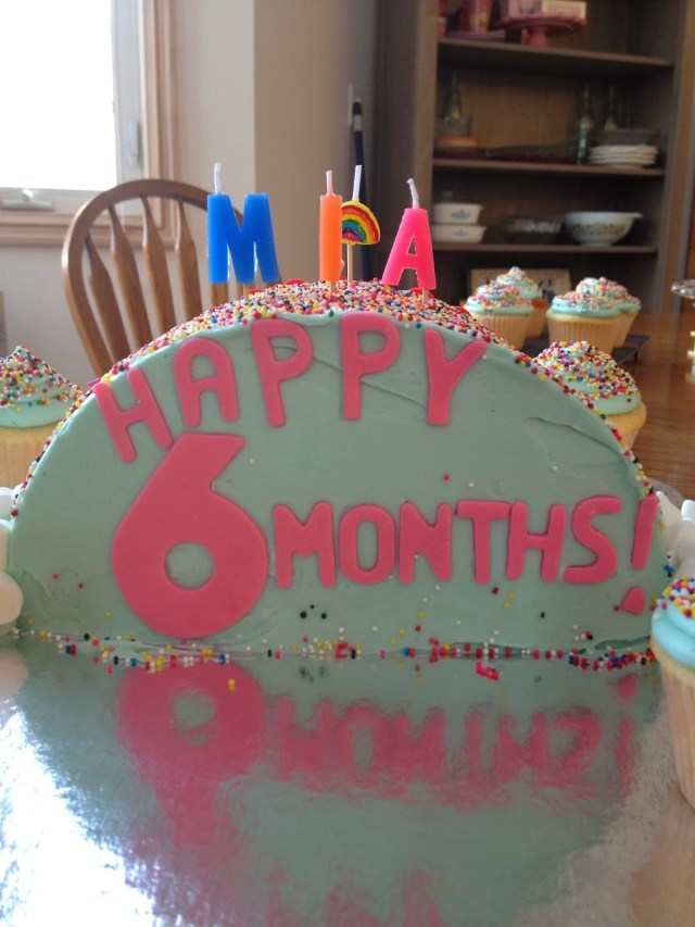 6 Month Birthday Cake Mias 6 Months Old Heart Soul Flour