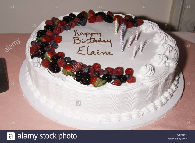 85Th Birthday Cake Elaine Stritch Stritchs 85th Stock