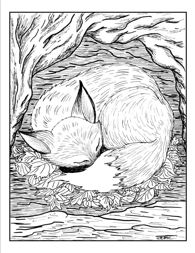 Adult Coloring Pages Free Adult Coloring Pages Smacs Place To Be