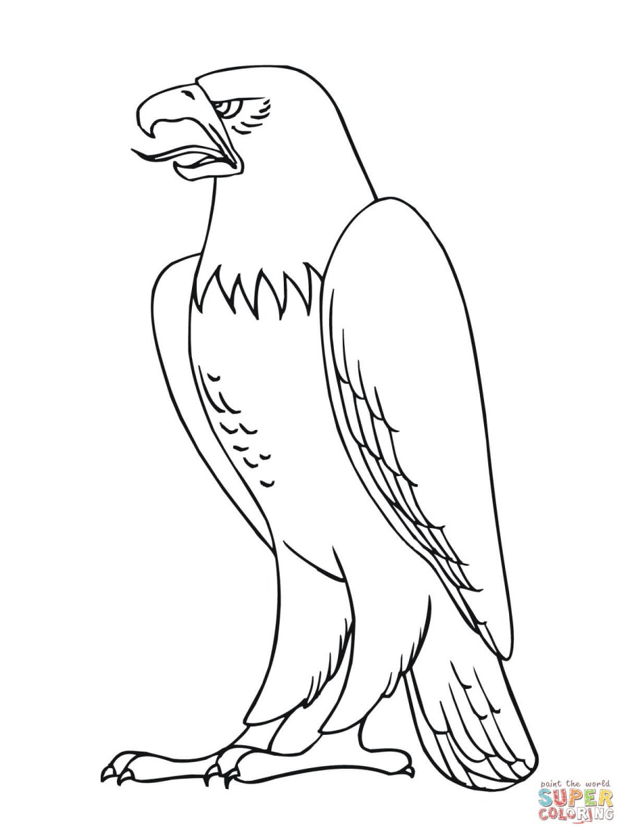Bald Eagle Coloring Page Bald Eagle Coloring Pages Free ...