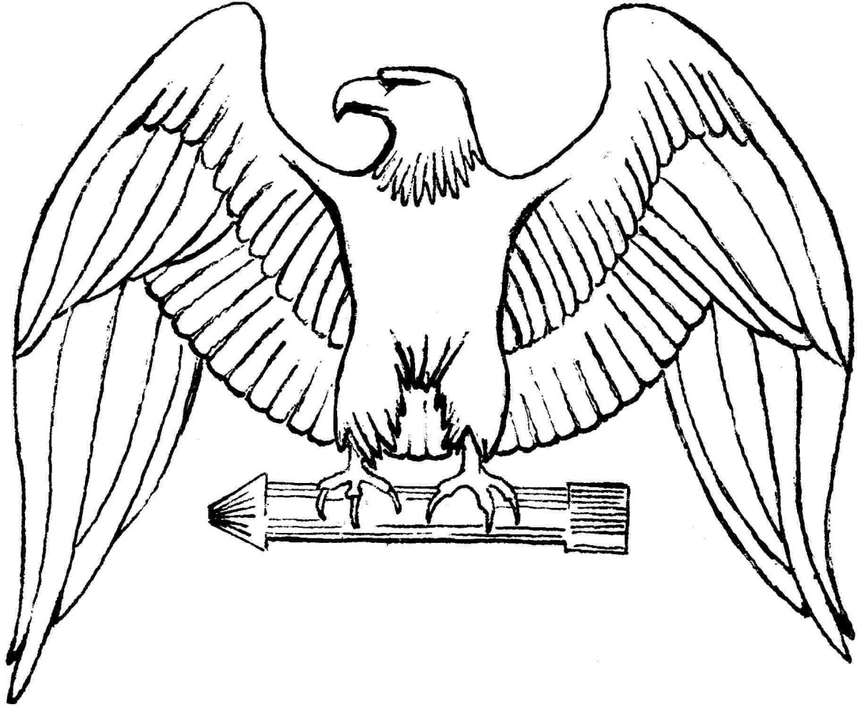 Bald Eagle Coloring Page Coloring Pages For Kids To Print ...