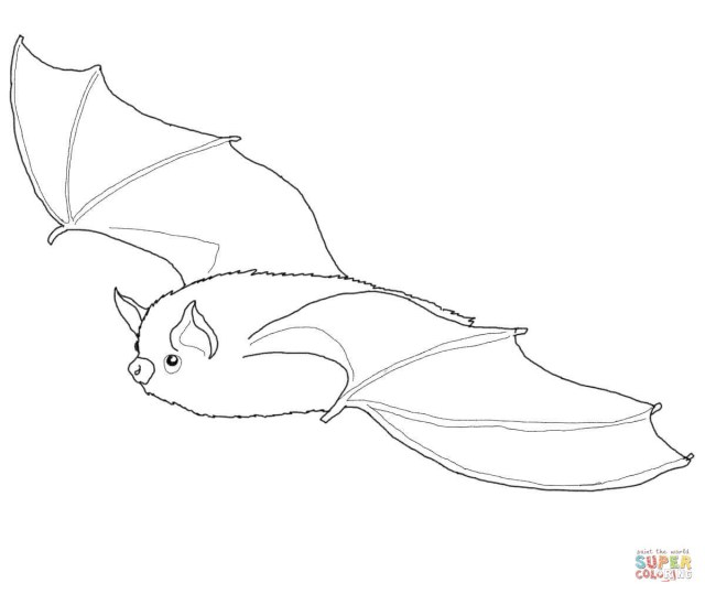 Bat Coloring Pages Bats Coloring Pages Free Coloring Pages