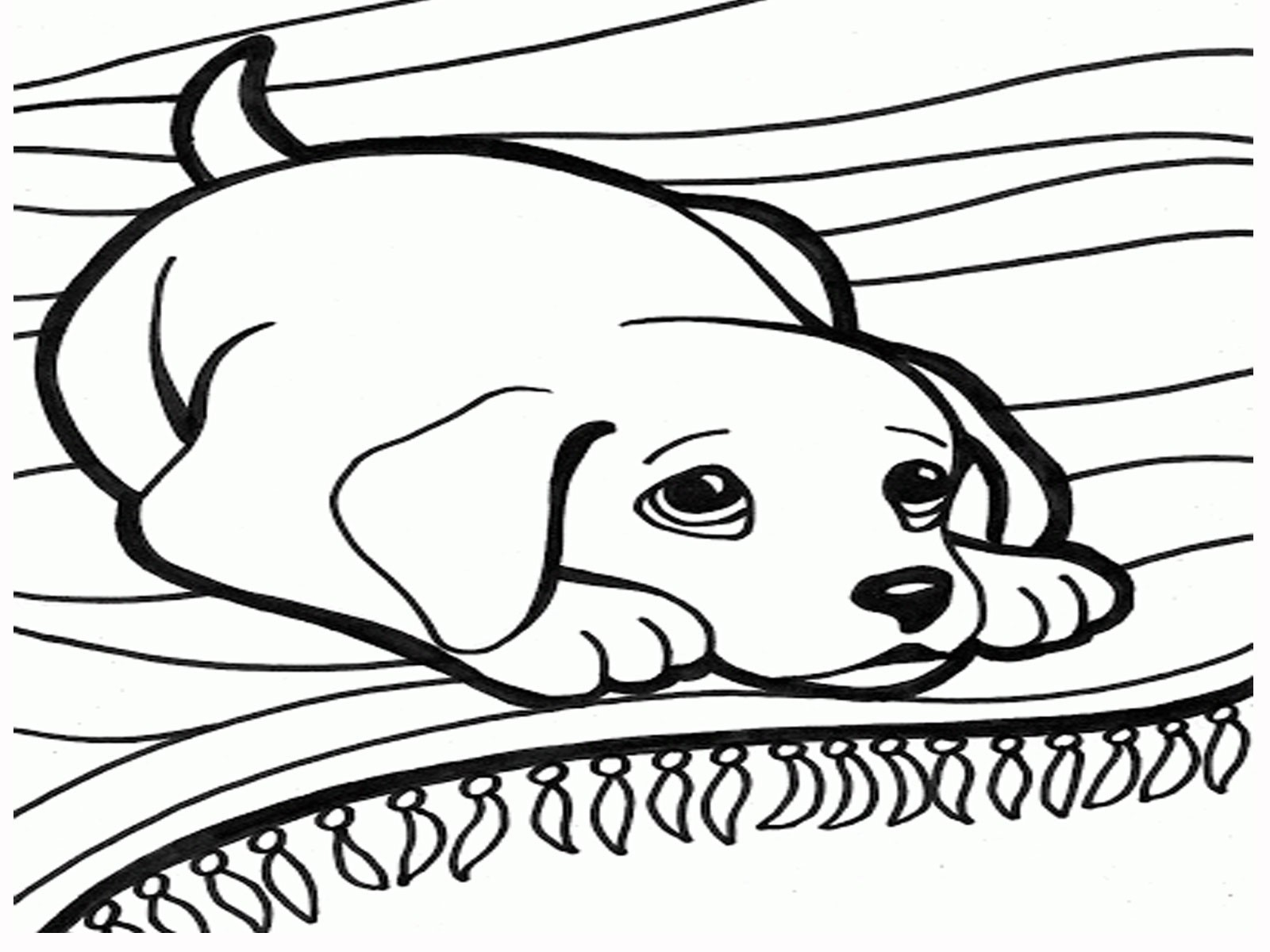 Dog And Cat Coloring Pages New Coloring Pages Dogs And Cats Dog Cat Refrence Of 8 Futurama Birijus Com