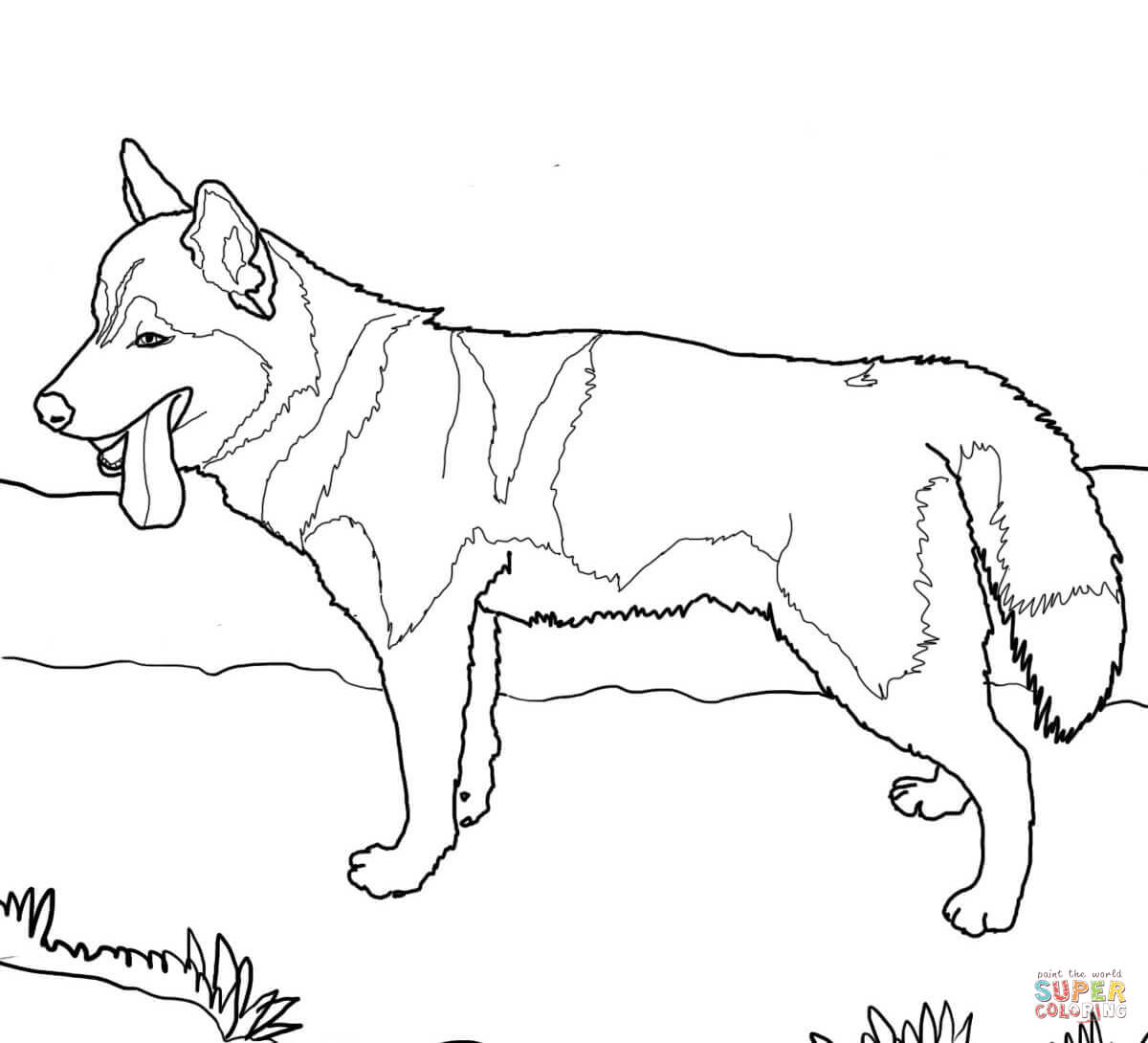 Dog Coloring Page Siberian Husky Dog Coloring Page Free Printable Coloring Pages Birijus Com