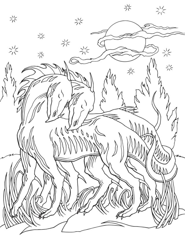 Dragon Coloring Pages For Adults Dragon Adult Coloring Pages At Getdrawings Free For Personal