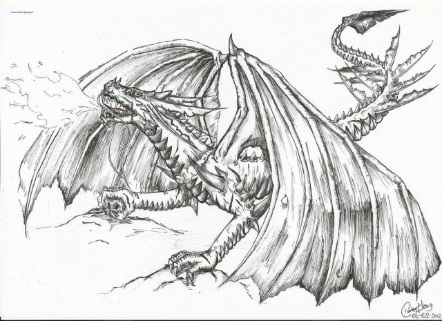 Dragon Coloring Pages For Adults Fire Breathing Dragon Coloring Pages For Adults