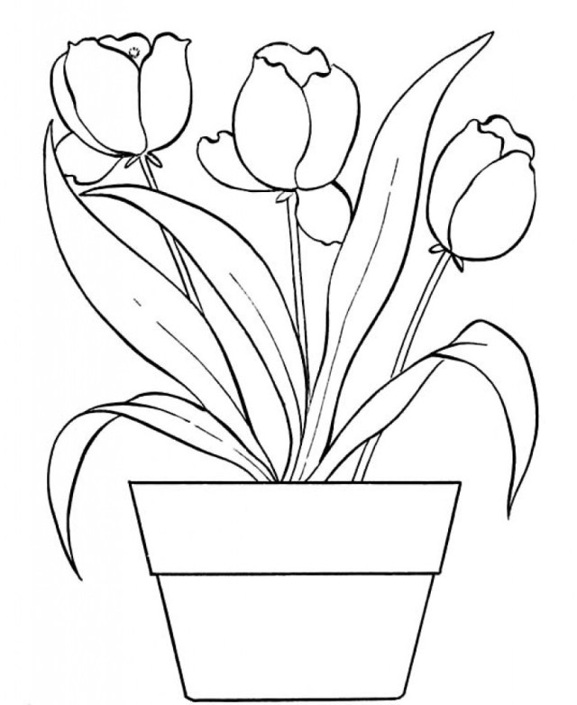 Flower Pot Coloring Page Luxurius Flower Pot Coloring Pages 77 Remodel With 7 Futurama