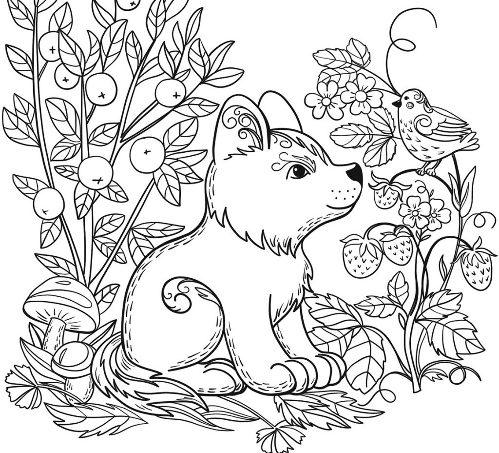 Forest Animals Coloring Pages Coloring Page Awesome Forest