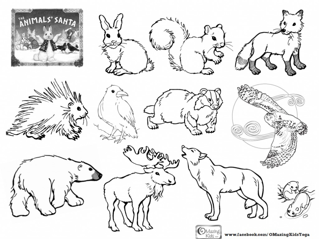 670 Top Coloring Pages Animals In The Forest  Images