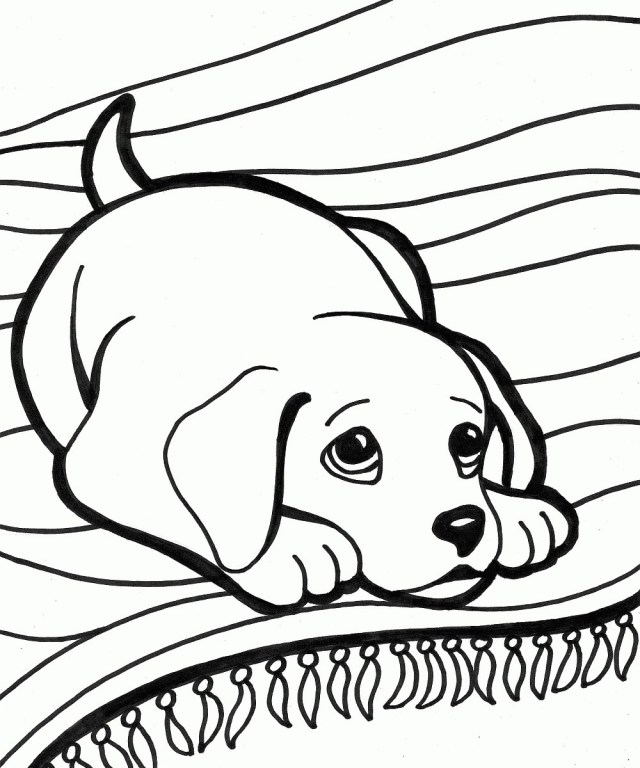 Free Dog Coloring Pages Dogs Coloring Pages Free Dog Runninggames Me 10001200 Attachment