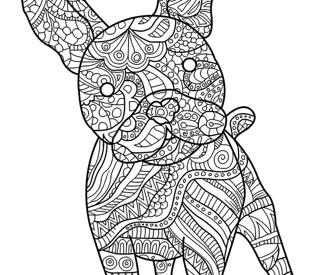 Free Dog Coloring Pages Dogs To Download For Free Dogs Kids