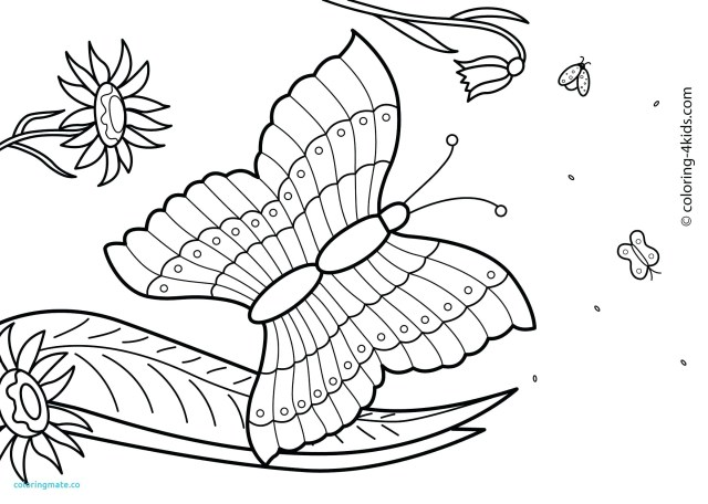 Tropical beach coloring page | Free Printable Coloring Pages | 456x640