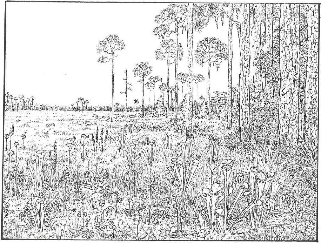 - Hard Coloring Pages Awesome Very Hard Coloring Pages For Adults