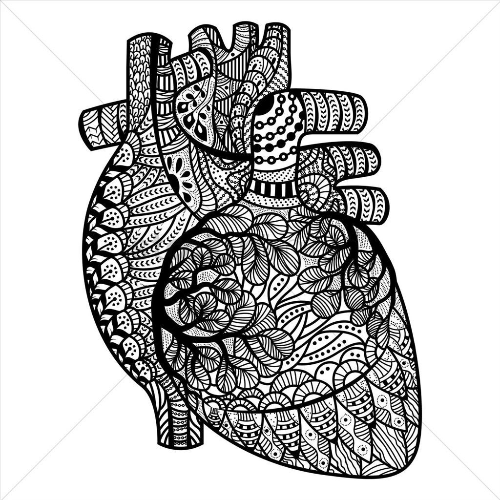Heart Coloring Pages For Adults Good Human Heart Coloring
