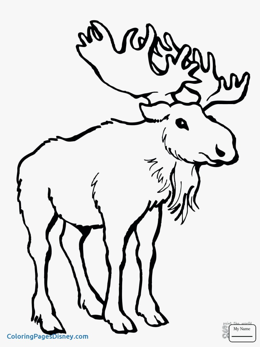 Moose Coloring Pages Cartoon Moose Coloring Pages Save Moose A Coloring Pages Lovely Birijus Com