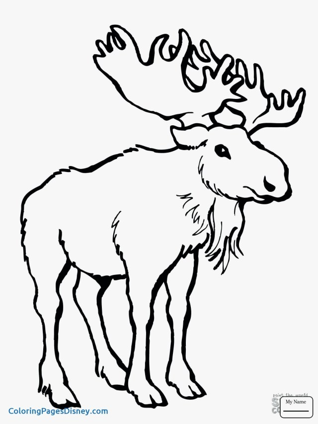 Moose Coloring Pages Cartoon Moose Coloring Pages Save Moose A Coloring Pages Lovely