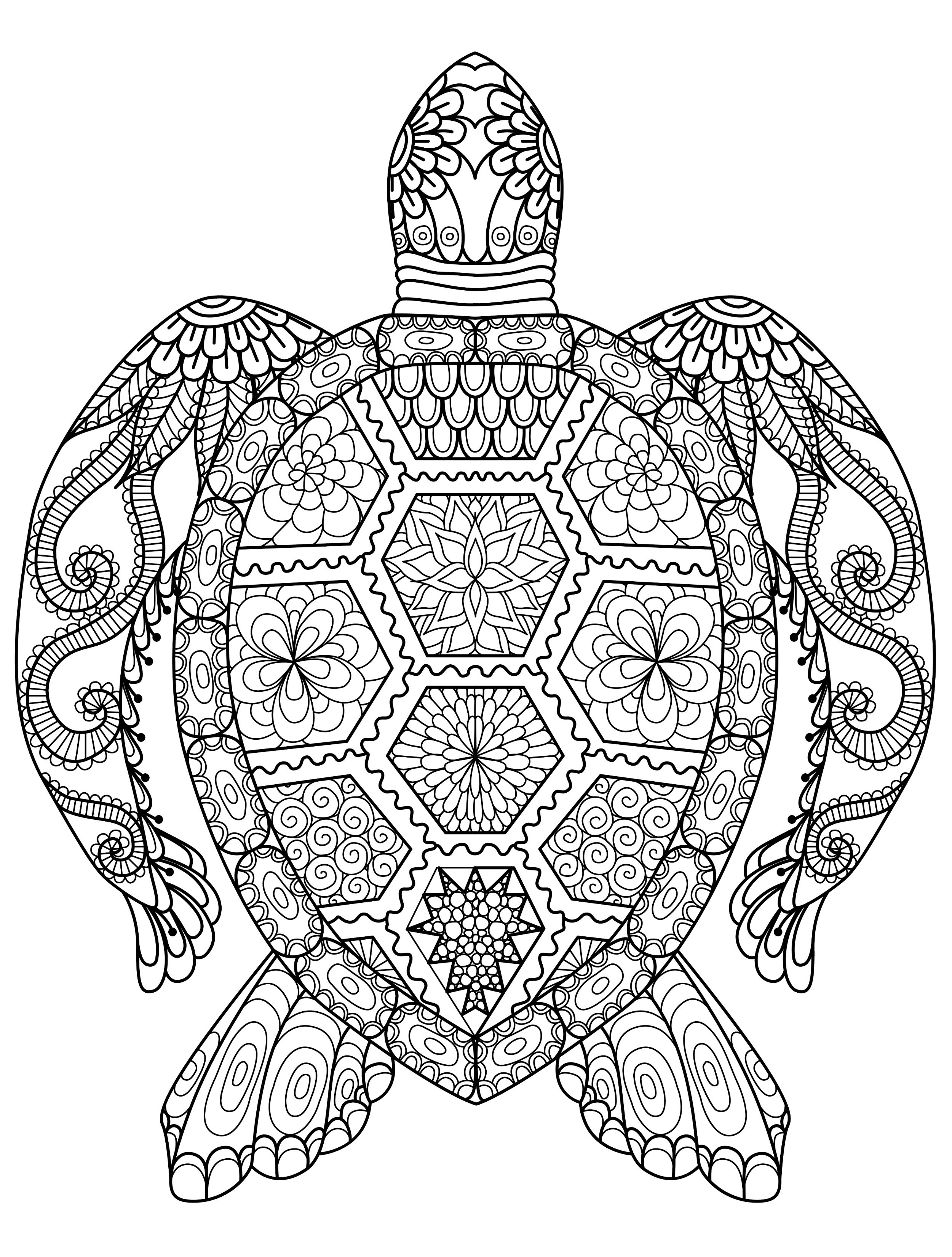 Online Coloring Pages For Adults 55 Best Animal Coloring Pages Adults Online Coloring Pages Birijus Com