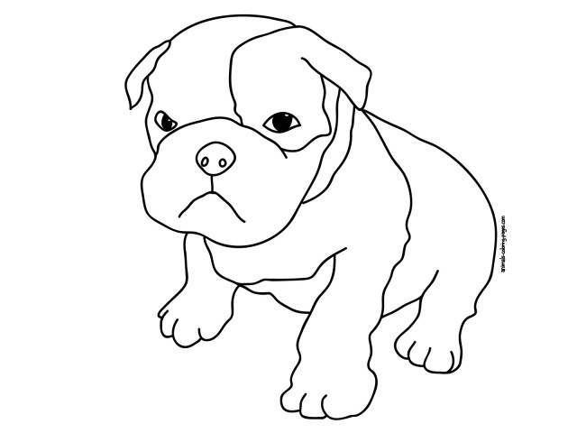 Pitbull Coloring Pages Color Pages To Print Pitbull Coloring Download And For Free 1600