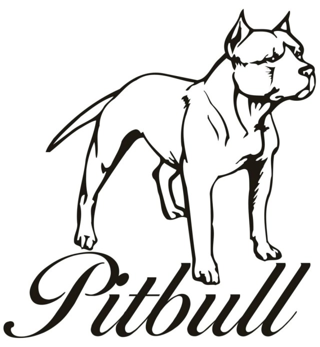 Pitbull Coloring Pages Drawings Of Pit Bulls Coloring Pages Good Looking Easy Pitbull