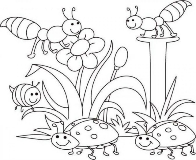 Pre K Coloring Pages Coloring Page Amazing Pre K Colorings New Sheets Printable For