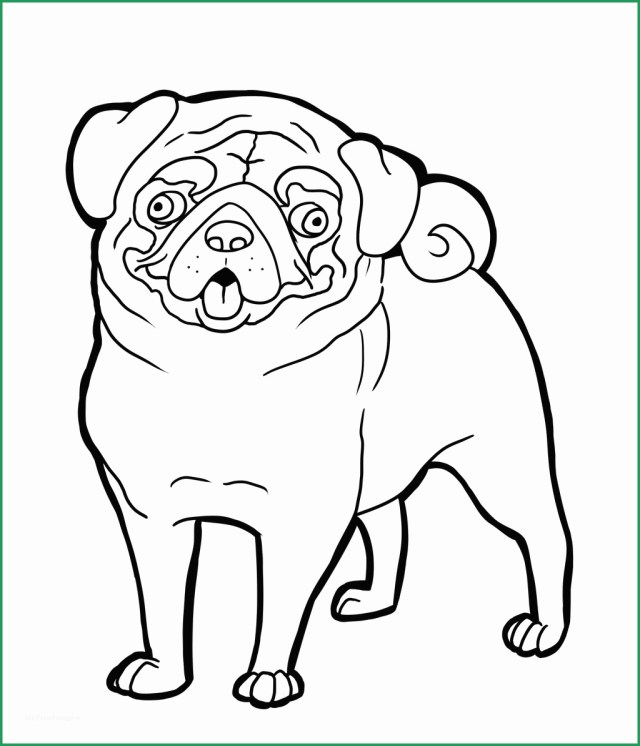 Pug Coloring Pages Free Grayscale Coloring Pages To Print Luxury Pug Coloring Pages