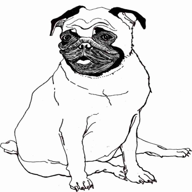 Pug Coloring Pages Pug Coloring Pages At Getdrawings Free For Personal Use Pug