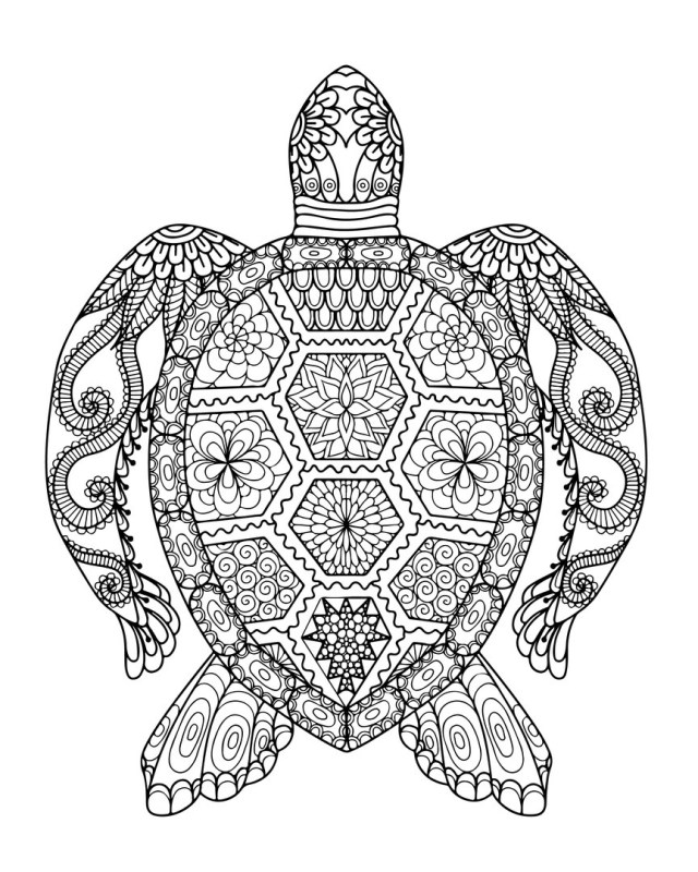 Sea Turtle Coloring Page Sea Turtle Coloring Page Lovely Simple Pages For Adults Auto Market