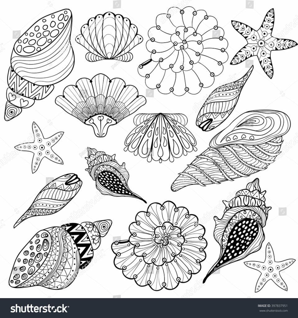Sea Shell Coloring Book in 2020 | Sea drawing, Coloring pages ... | 1024x960