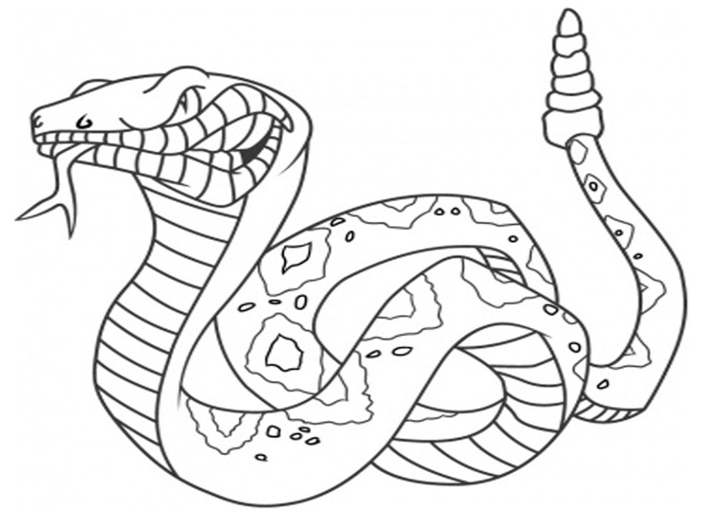 Snake Coloring Pages Printable Snake Coloring Pages Wuming ...