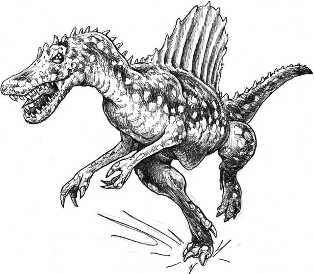 Spinosaurus Coloring Page Spinosaurus Coloring Pages Realistic Btte Coloring Page 4 Kids