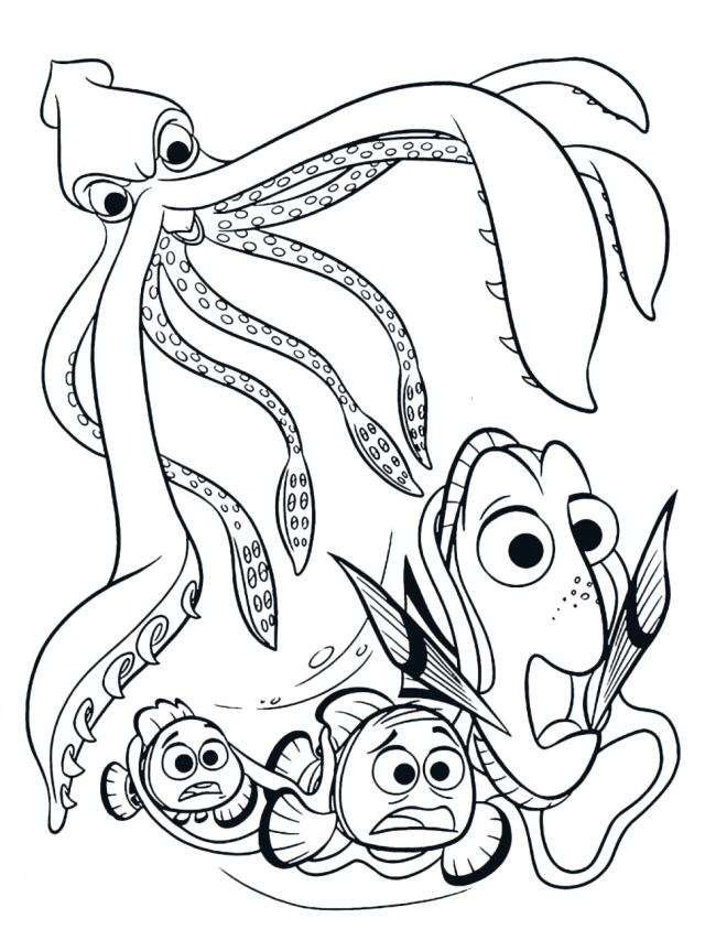 Squid Coloring Pages Colossal Squid Drawing At Getdrawings Free For Personal Use