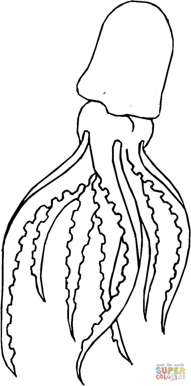 Squid Coloring Pages Giant Squid Coloring Page Free Printable Coloring Pages