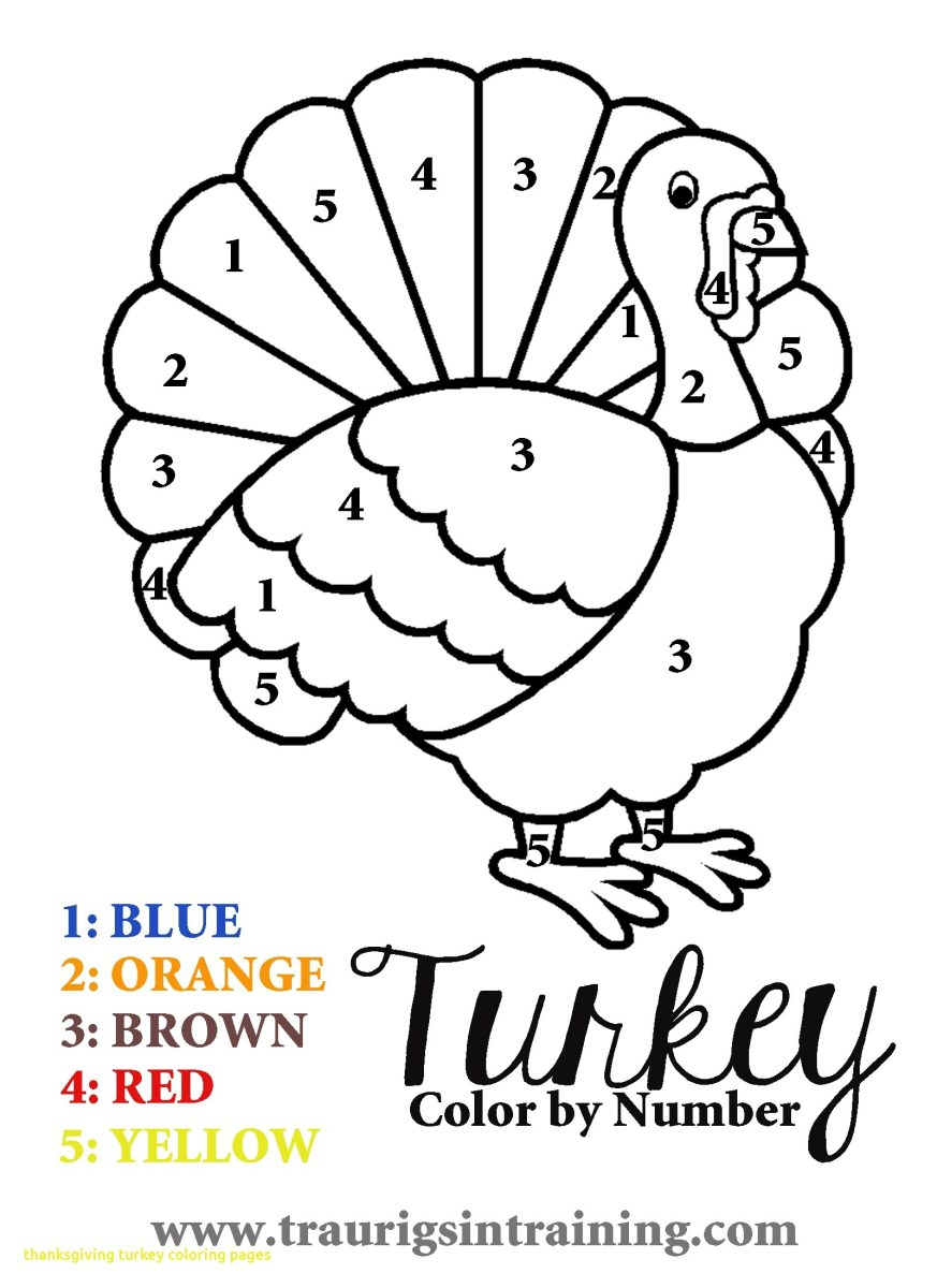 Thanksgiving Turkey Coloring Pages Thanksgiving Turkey Color Page