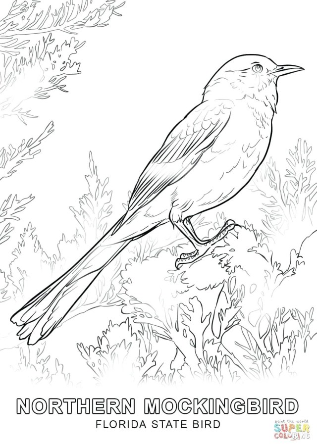 Tweety Bird Coloring Pages Cooloring Book Tweety Bird Coloring Pages To Print For Free Color
