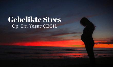Gebelikte Stres