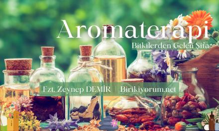 Aromaterapi Bitkilerden Gelen Şifa