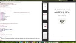 Bild: MacTeX mit Emacs für macOS und dem Editor Emacs.
