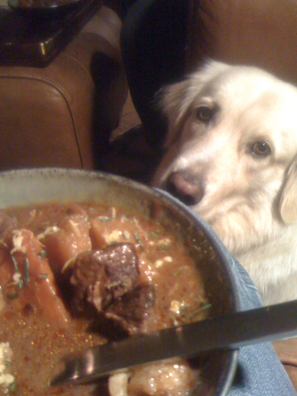 Beef and Root Vegetable Stew (Jack Sniffing)