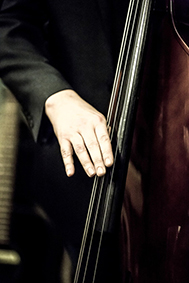 Double bass close up - Ort, 10th Aug - LR