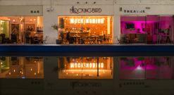 Birmingham Film Festival @ The Mockingbird 25-27.11.16