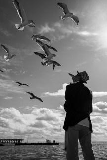 O amigo das gaivotas
