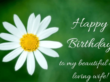 Birthday Wishes for your Wife