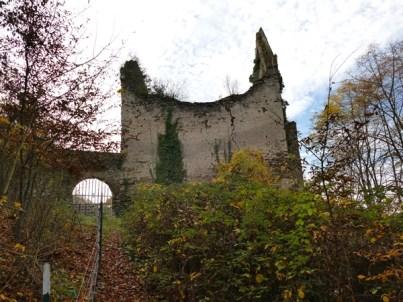 Wanderung k Burg Sayn, Traumpfad Saynsteig 8.11.15 B+M 2015-11-08 010