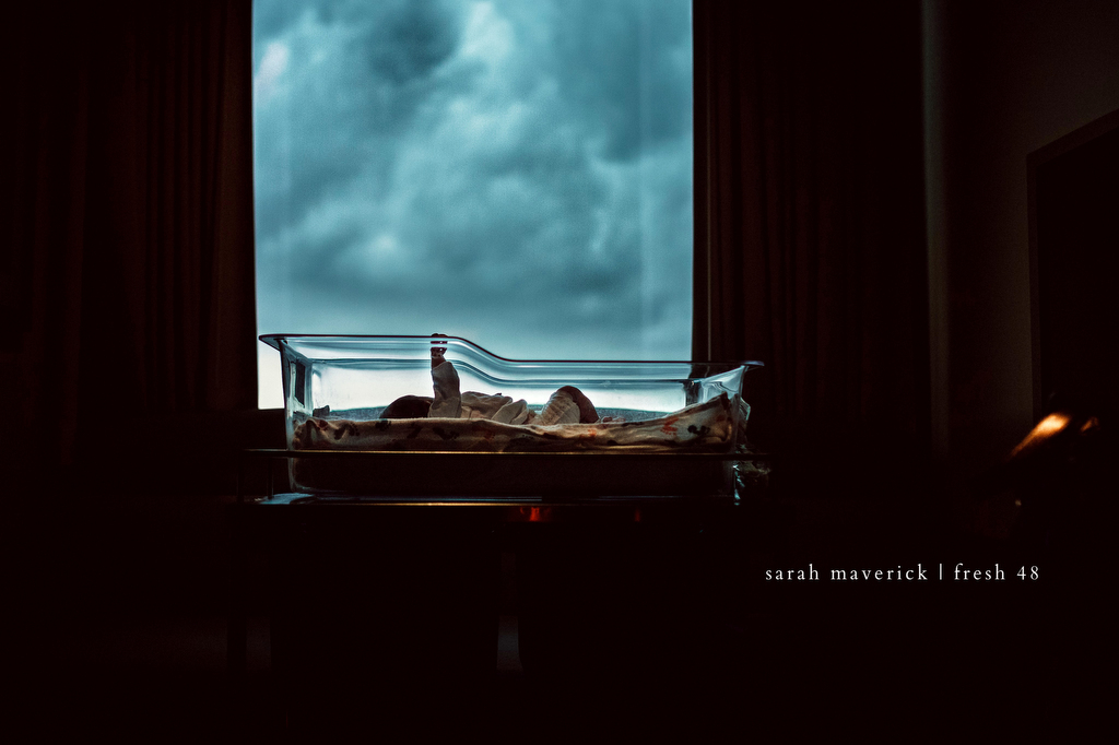 2020 Honorable Mention | 0680 | ON THE DAY YOU WERE BORN. by Sarah Maverick Photography